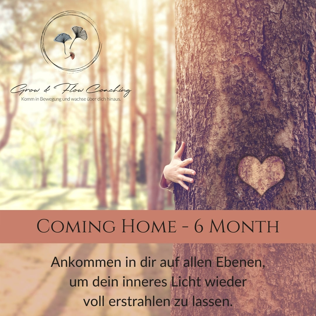 Coming Home 6 Month